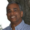 AGRAWAL Sunil K (USA)